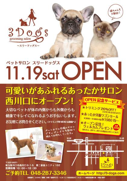 3dogs_chirashi_omote_a5_ol.jpg